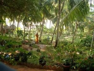 Somatheeram Ayurvedic Health Resort 3*