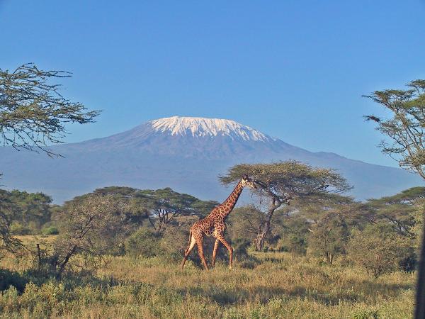 Фото туры кения 4