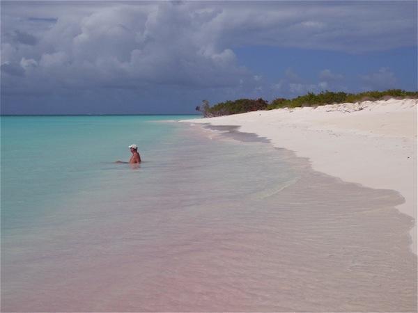 Розовый пляж острова харбор